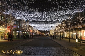 Light festival - with lights everywhere